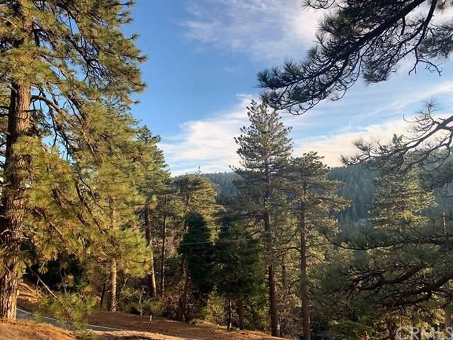 21858 Fern Canyon Road, Cedarpines Park, CA 92322 (#EV19273450) :: Allison James Estates and Homes