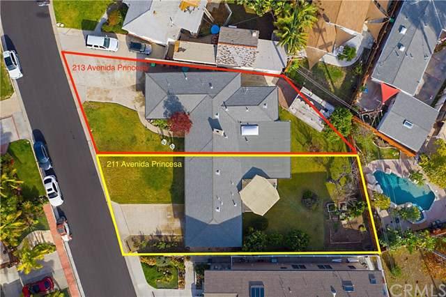211 Avenida Princesa, San Clemente, CA 92672 (#OC19276551) :: Sperry Residential Group