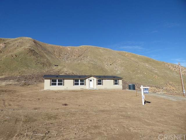 455 Lance Ave, Lebec, CA 93243 (#SR19272128) :: Twiss Realty