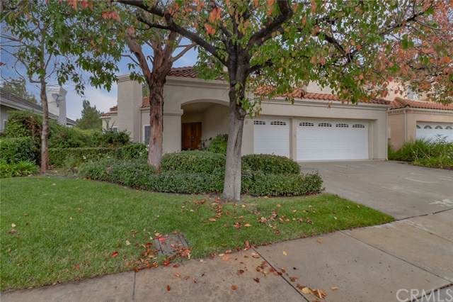 11901 Maple Crest Street, Moorpark, CA 93021 (#CV19283789) :: Allison James Estates and Homes