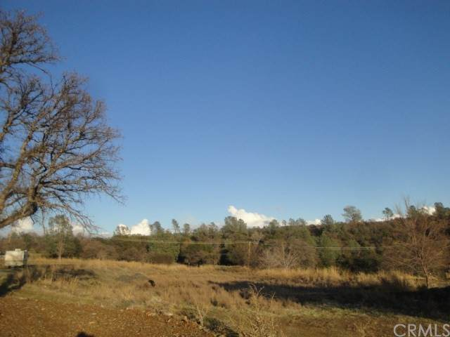 4288 Olive Highway - Photo 1