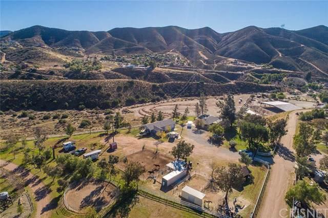 34330 Rocking Horse Road, Agua Dulce, CA 91390 (#SR20000972) :: RE/MAX Estate Properties