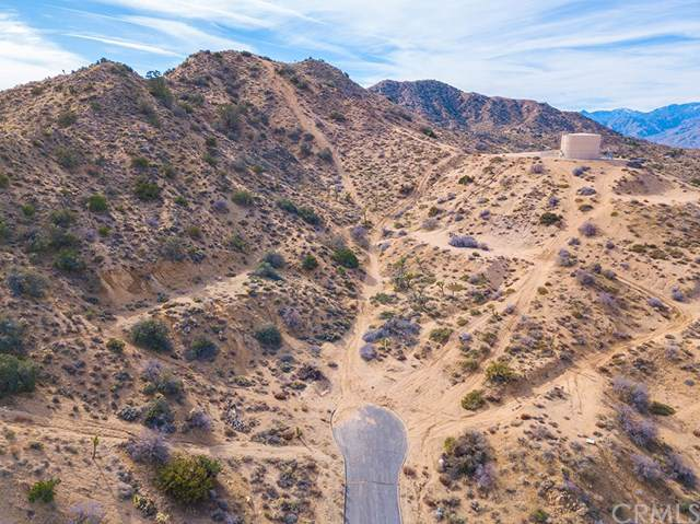 55509 Free Gold Drive, Yucca Valley, CA 92284 (#SW20001396) :: Allison James Estates and Homes