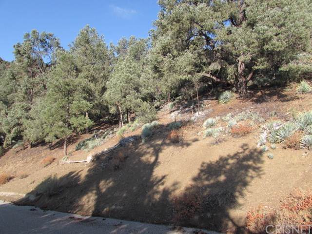 16524 Oakwood Way, Pine Mountain Club, CA  (#SR20002357) :: RE/MAX Parkside Real Estate