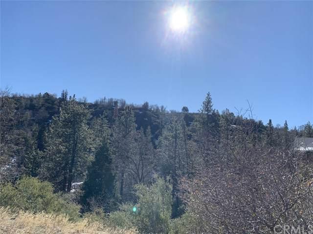 0 Ironbark Lane, Cedar Glen, CA 92321 (#EV20005565) :: Sperry Residential Group