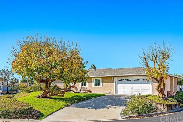 3301 Paseo Halcon, San Clemente, CA 92672 (#OC20005127) :: Z Team OC Real Estate