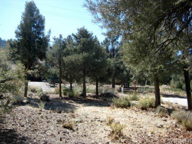 2029 St Bernard Drive, Pine Mountain Club, CA  (#SR20007150) :: RE/MAX Parkside Real Estate