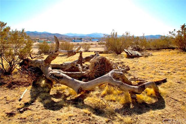0 Warren Way, Yucca Valley, CA  (#JT20007743) :: Sperry Residential Group