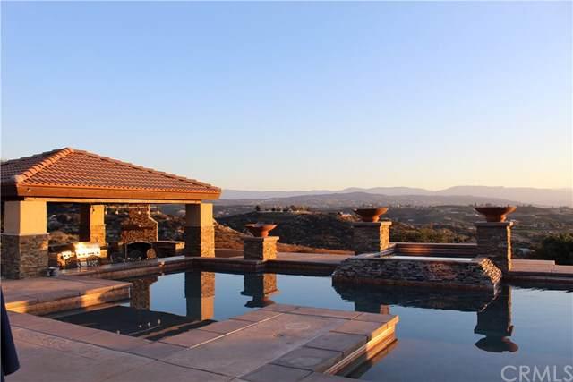 38125 Overhill Road, Temecula, CA 92592 (#SW20007843) :: Allison James Estates and Homes