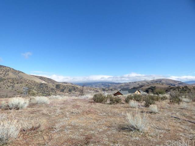 3 Valley Oak Way, Lebec, CA 93243 (#SR20006227) :: The Houston Team | Compass