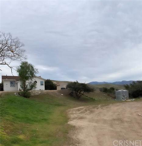 32410 Barber Road, Agua Dulce, CA 91390 (#SR20009787) :: RE/MAX Estate Properties