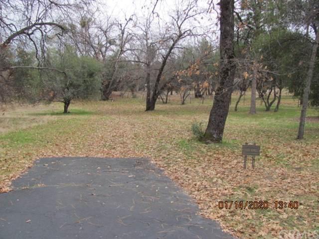8 Blackberry Trail, North Fork, CA 93643 (#FR20010306) :: Twiss Realty