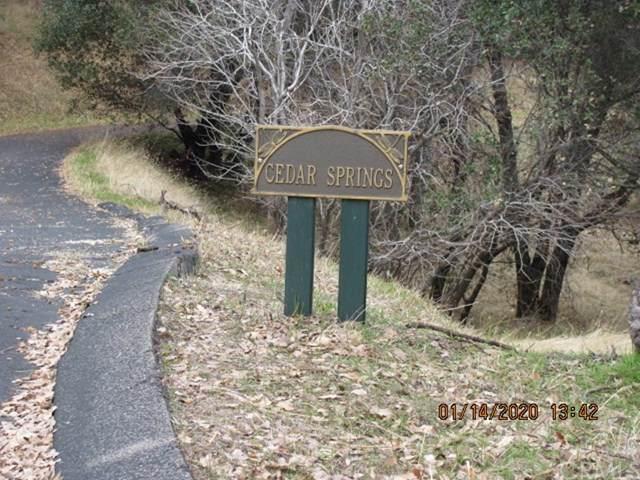 6 Blackberry Trail, North Fork, CA 93643 (#FR20010348) :: Twiss Realty