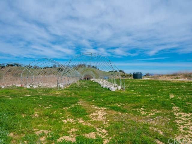7930 Blazing Saddle Drive - Photo 1