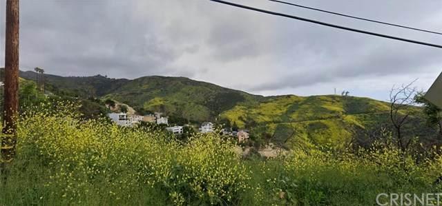 1 Latigo Cyn & Ocean View - Photo 1