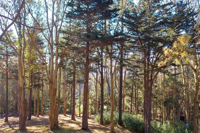 40 Bay View Road - Photo 1