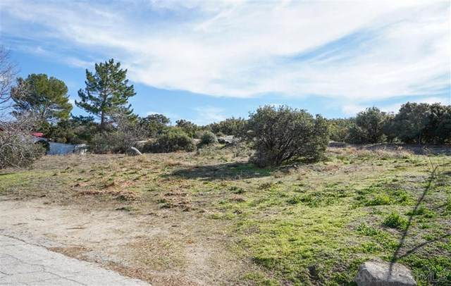Canadian Honker Rd., Campo, CA 91906 (#200005134) :: The Costantino Group | Cal American Homes and Realty