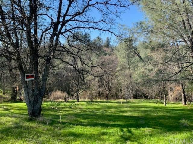 203 Lemon Hill Drive - Photo 1