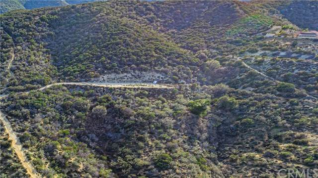 0 Vac/Vic 92nd Stw, Leona Valley, CA 93551 (#PW20032857) :: RE/MAX Masters