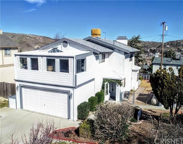 14831 Ripton Road, Lake Hughes, CA 93532 (#SR20030093) :: The Brad Korb Real Estate Group