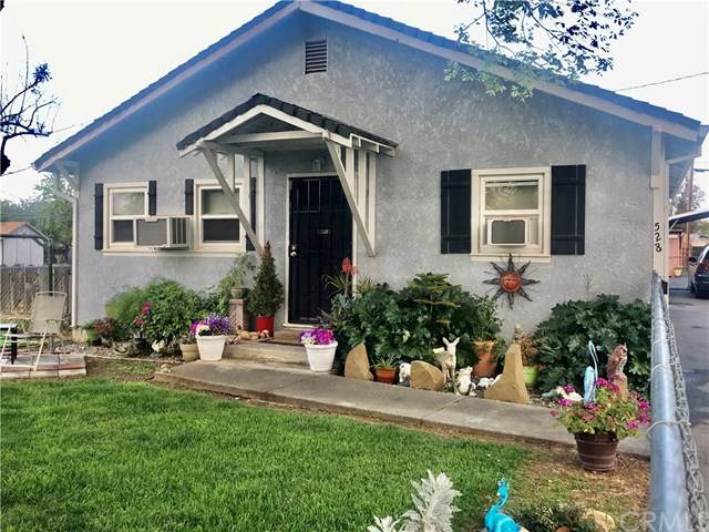 528 5th Street, Willows, CA 95988 (#SN20057197) :: RE/MAX Masters