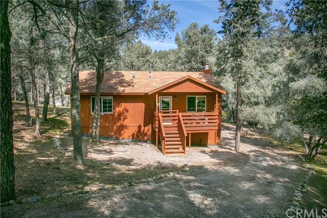 14217 Delta Lane, Pine Mountain Club, CA 93225 (#CV20065049) :: RE/MAX Parkside Real Estate