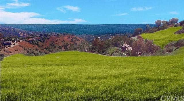 11111 Temple Hills, Laguna Beach, CA  (#OC20075757) :: RE/MAX Masters