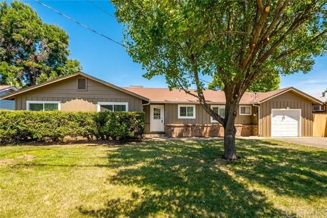 2508 Durham Dayton, Durham, CA 95938 (#SN20077414) :: The Laffins Real Estate Team