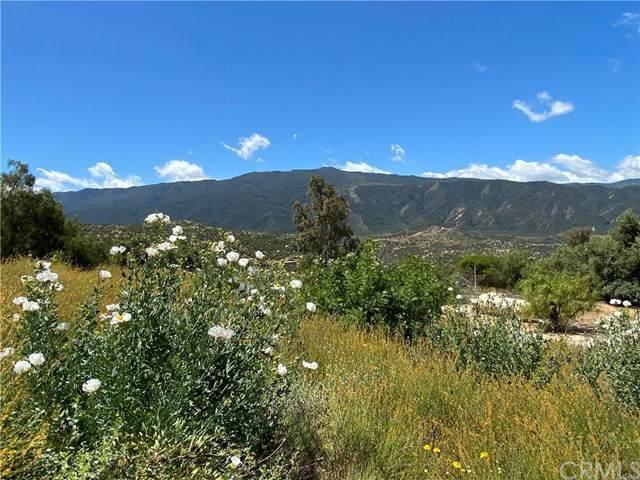 38729 Highway 79, Warner Springs, CA 92086 (#SW20086402) :: Bathurst Coastal Properties