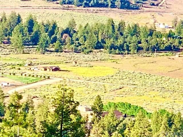 0 Steinhoff, Frazier Park, CA  (MLS #AR20094415) :: Desert Area Homes For Sale