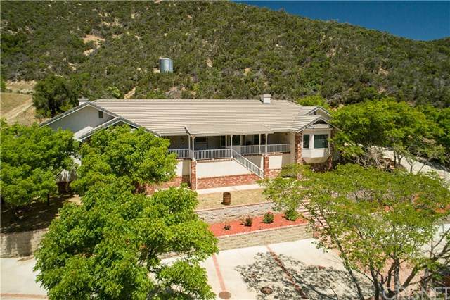 11249 Lonesome Valley Road, Leona Valley, CA 93551 (#SR20094792) :: The Marelly Group | Compass