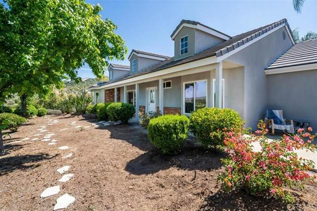 230 Salmon Rd, Ramona, CA 92065 (#200022951) :: The Costantino Group   Cal American Homes and Realty