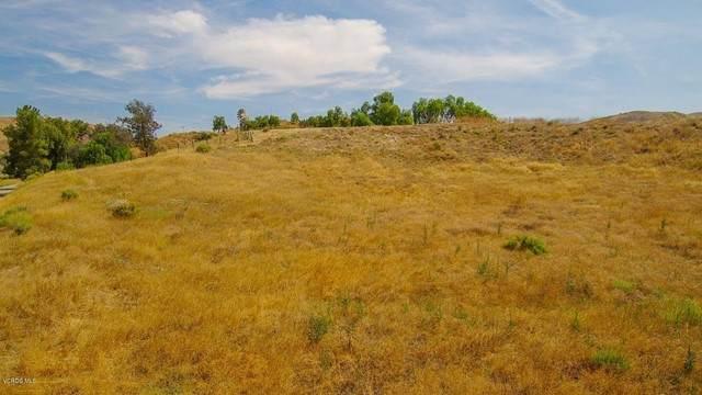 999 Lost Creek Road, Valencia, CA 91355 (#220005879) :: Corcoran Global Living