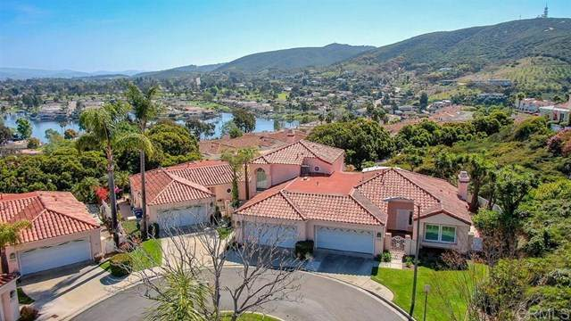 1208 Via Portovecchio, San Marcos, CA 92078 (#200029874) :: Sperry Residential Group