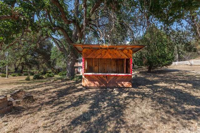 3808 Ben Hur Road, Mariposa, CA 95338 (#MP20128259) :: The Marelly Group | Compass