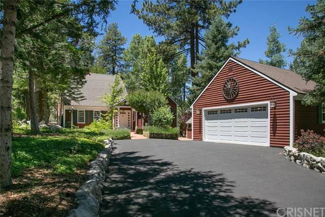 2205 Fernwood Drive, Pine Mountain Club, CA 93222 (#SR20131888) :: Re/Max Top Producers