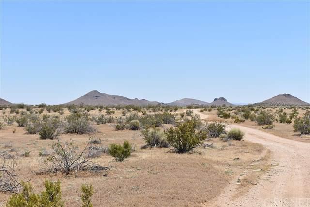 100 E Laguna Ave, Mojave, CA 93501 (#SR20144392) :: Sperry Residential Group