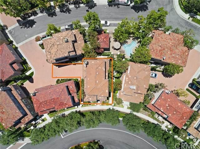 50 Via Amanti, Newport Coast, CA 92657 (#OC20147263) :: Sperry Residential Group