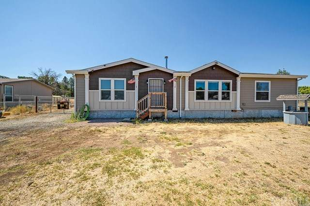 17163 Mustang Court, Lower Lake, CA 95457 (#LC20148715) :: The Laffins Real Estate Team