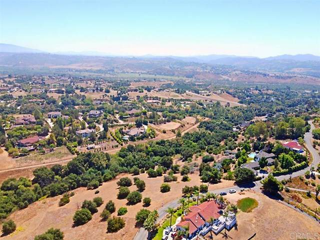 0 Palomar Drive - Photo 1