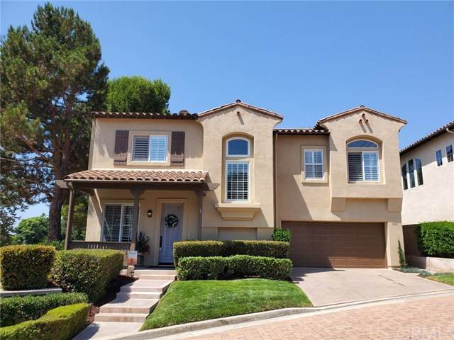 7001 Surfbird Circle, Carlsbad, CA 92011 (MLS #PW20183479) :: Desert Area Homes For Sale
