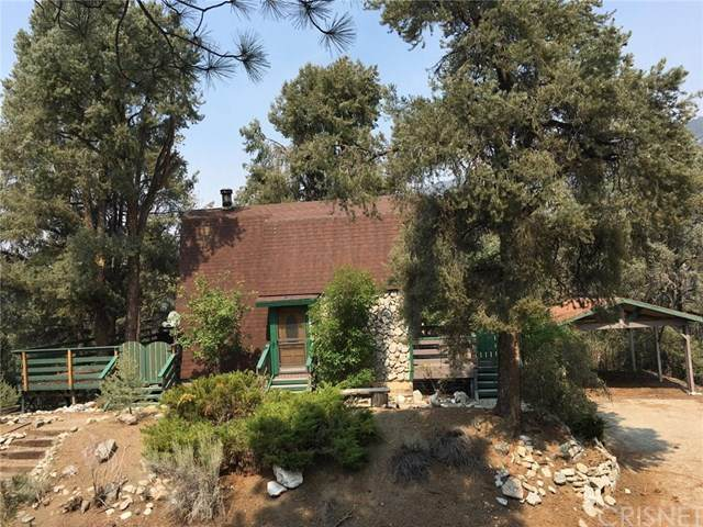 2328 Adobe Lane, Pine Mountain Club, CA 93222 (#SR20187719) :: The Najar Group