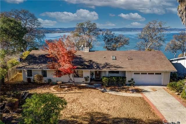 1585 Westlake Drive, Kelseyville, CA 95451 (#LC20192918) :: Bathurst Coastal Properties