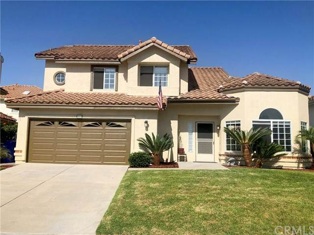 443 Calle Corazon, Oceanside, CA 92057 (#IV20201446) :: Re/Max Top Producers