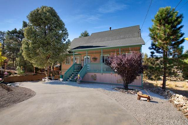 1240 Crestwood Drive, Big Bear, CA 92314 (#PW20216012) :: Team Forss Realty Group