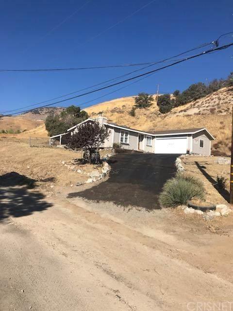 449 Chimney Canyon Road, Lebec, CA 93243 (#SR20227308) :: Steele Canyon Realty