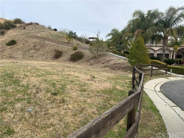 27198 Sand Canyon Road, Canyon Country, CA 91387 (#SR20235573) :: Realty ONE Group Empire