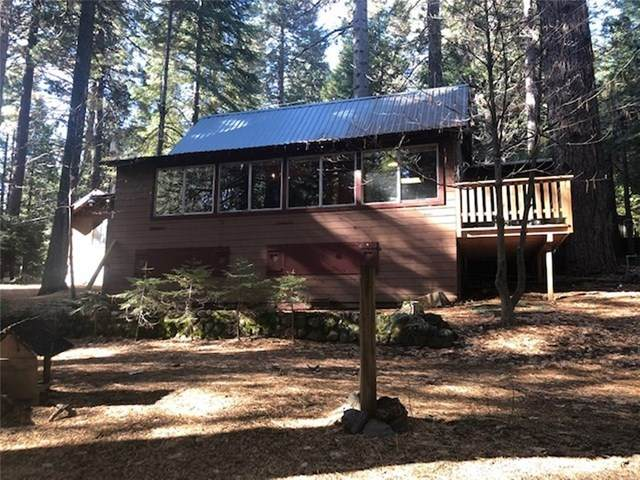 7720 Forest Drive, Fish Camp, CA 93623 (#FR20238587) :: Twiss Realty