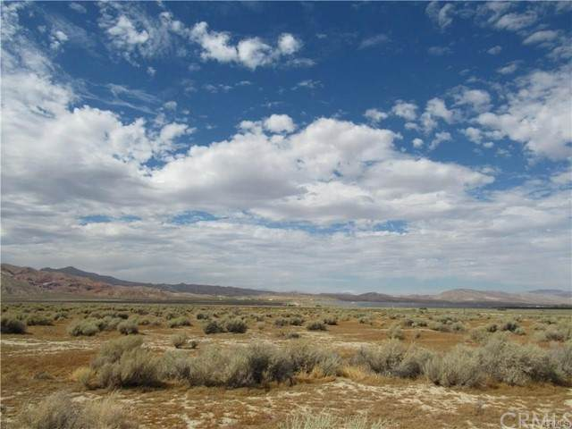 0 181-374-05-00-1 Issac Avenue, Cantil, CA 93501 (MLS #EV20255808) :: Desert Area Homes For Sale