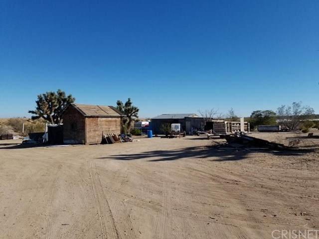 18501 Fort Tejon Road - Photo 1